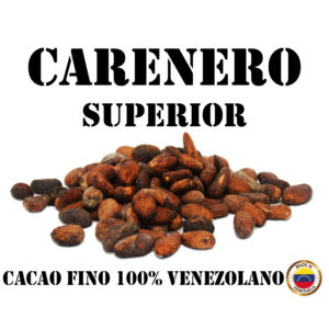 Granos de Cacao - Carenero Superior, Venezuela