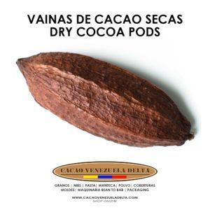 VAINAS DE CACAO SECA - CACAO VENEZUELA DELTA